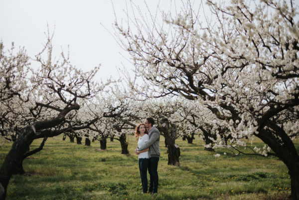 Niagara-on-the-Lake orchard Engagement Portraits by Daring Wanderer // www.daringwanderer.com