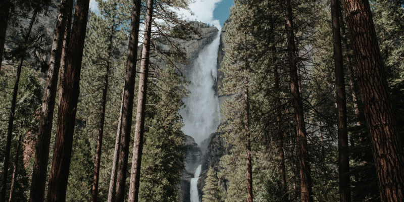 Lower Yosemite Falls in Yosemite National Park