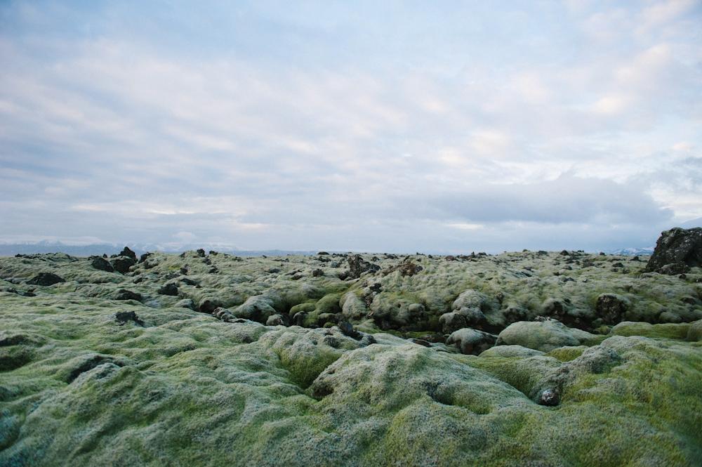 Daring Wanderer Photography - Daring Wanderer - Iceland - Iceland Photographer - Iceland Wedding Photographer - Travel - Iceland Travel Photographer - Iceland Travel Photography - Reykjavik, Iceland - Reykjavik Photography - Travel Photography - Iceland Lifestyle Session - Iceland Lifestyle Photography