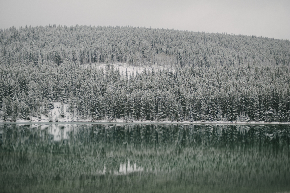Snow covered tree reflection in calm water at Two Jack lake