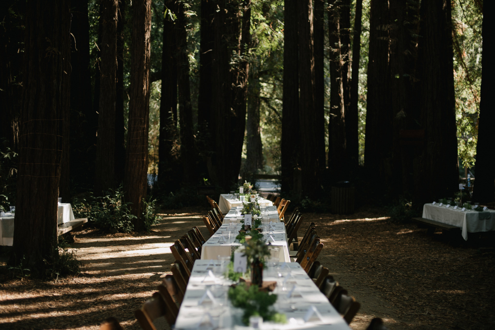 Daring Wanderer Photography - Daring Wanderer - Destination Wedding Photographer - Mill valley wedding photographer - Old Mill Park Wedding - Redwoods wedding - forest wedding ceremony - california wedding photographer - the outdoor arts club wedding