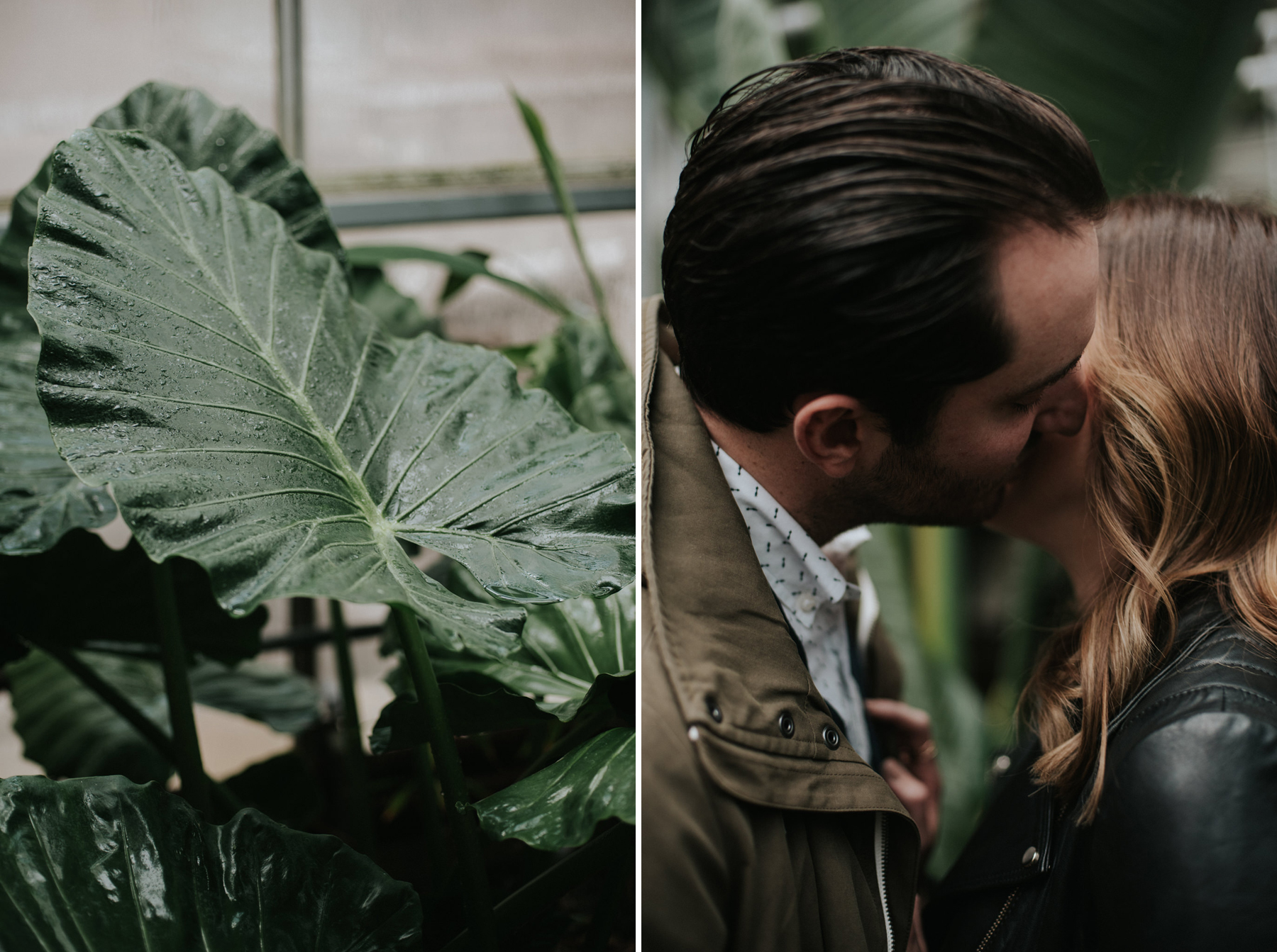 Daring Wanderer // Botanical greenhouse engagement at Cloud Gardens
