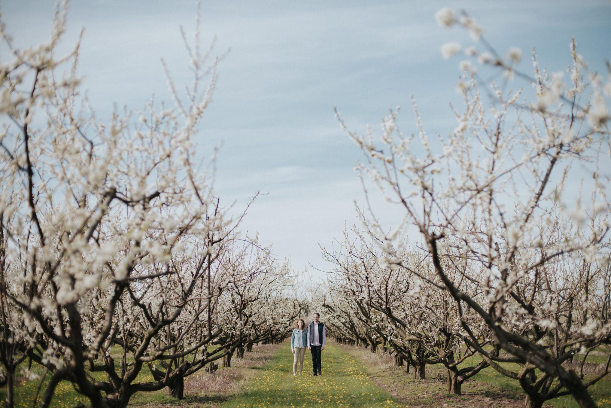 Spring bloom orchard engagement shoot by Daring Wanderer // www.daringwanderer.com