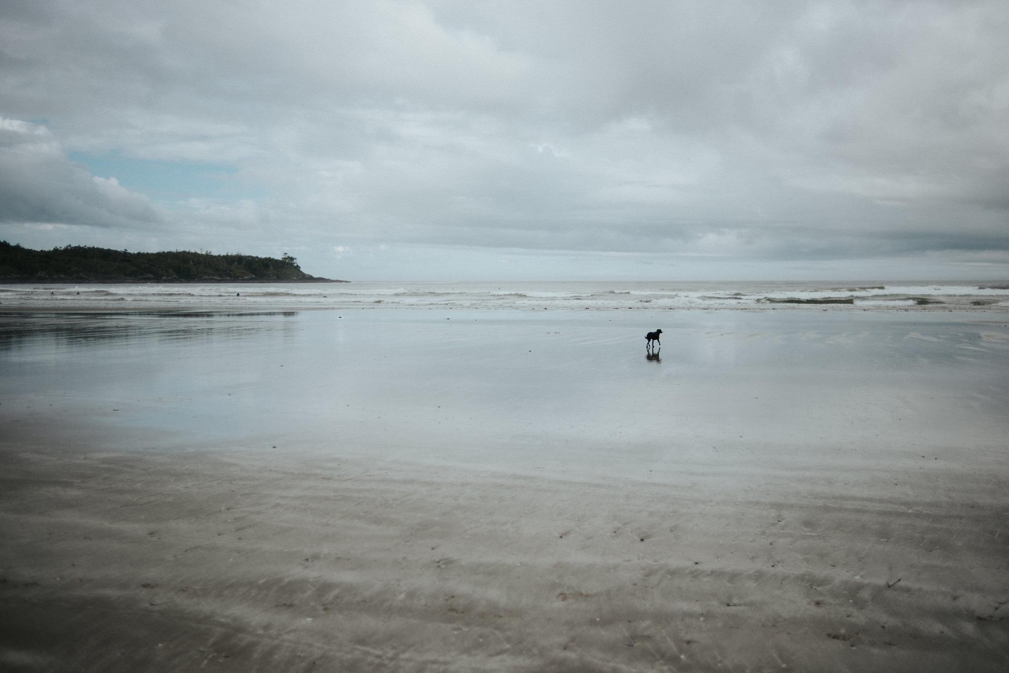 Cox Bay surfing in Tofino // Daring Wanderer: www.daringwanderer.com