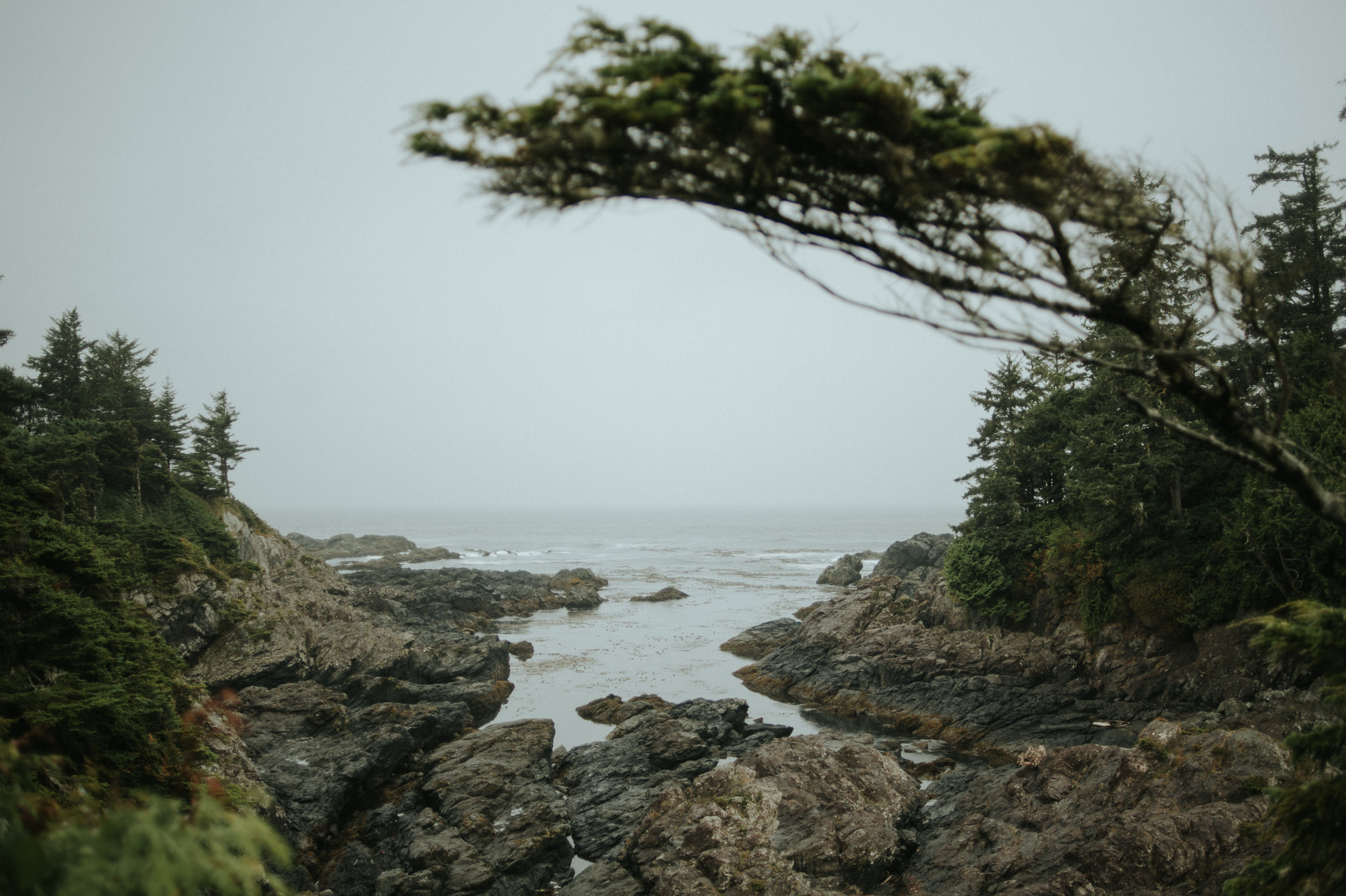 Hiking the Wild Pacific Trail in Ucluelet, BC // Daring Wanderer: www.daringwanderer.com