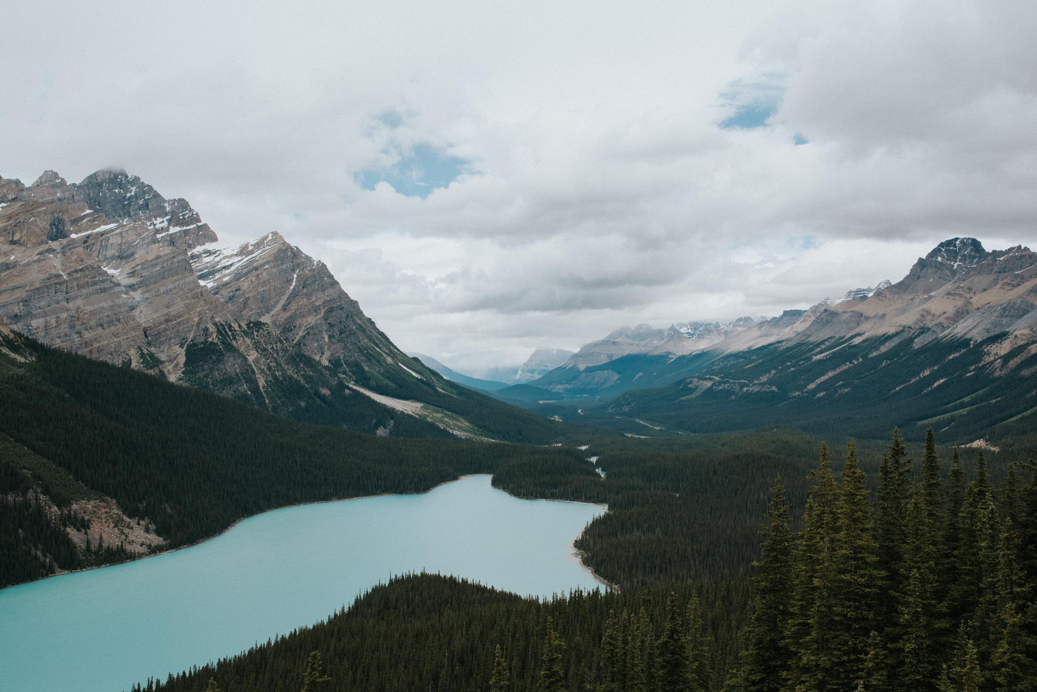 Peyto Lake in Banff National Park // Daring Wanderer: www.daringwanderer.com