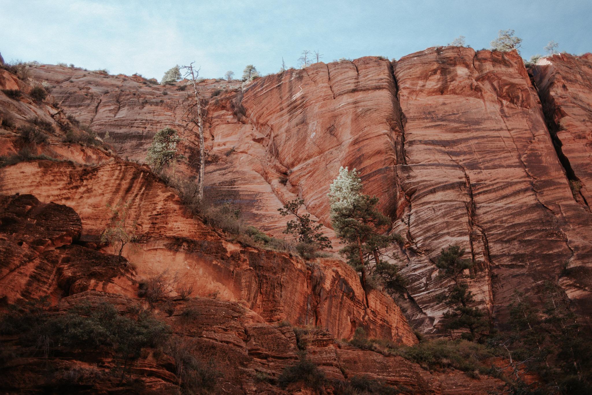 Hiking Angel's Landing, Zion National Park // Daring Wanderer: www.daringwanderer.com