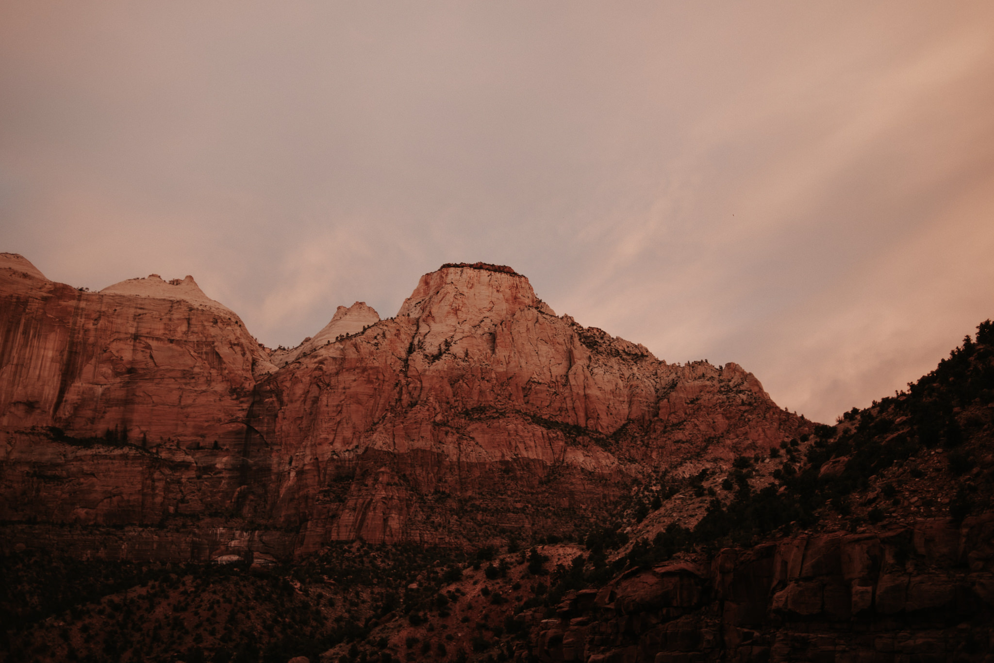 Hiking Angel's Landing in Zion National Park // Daring Wanderer: www.daringwanderer.com