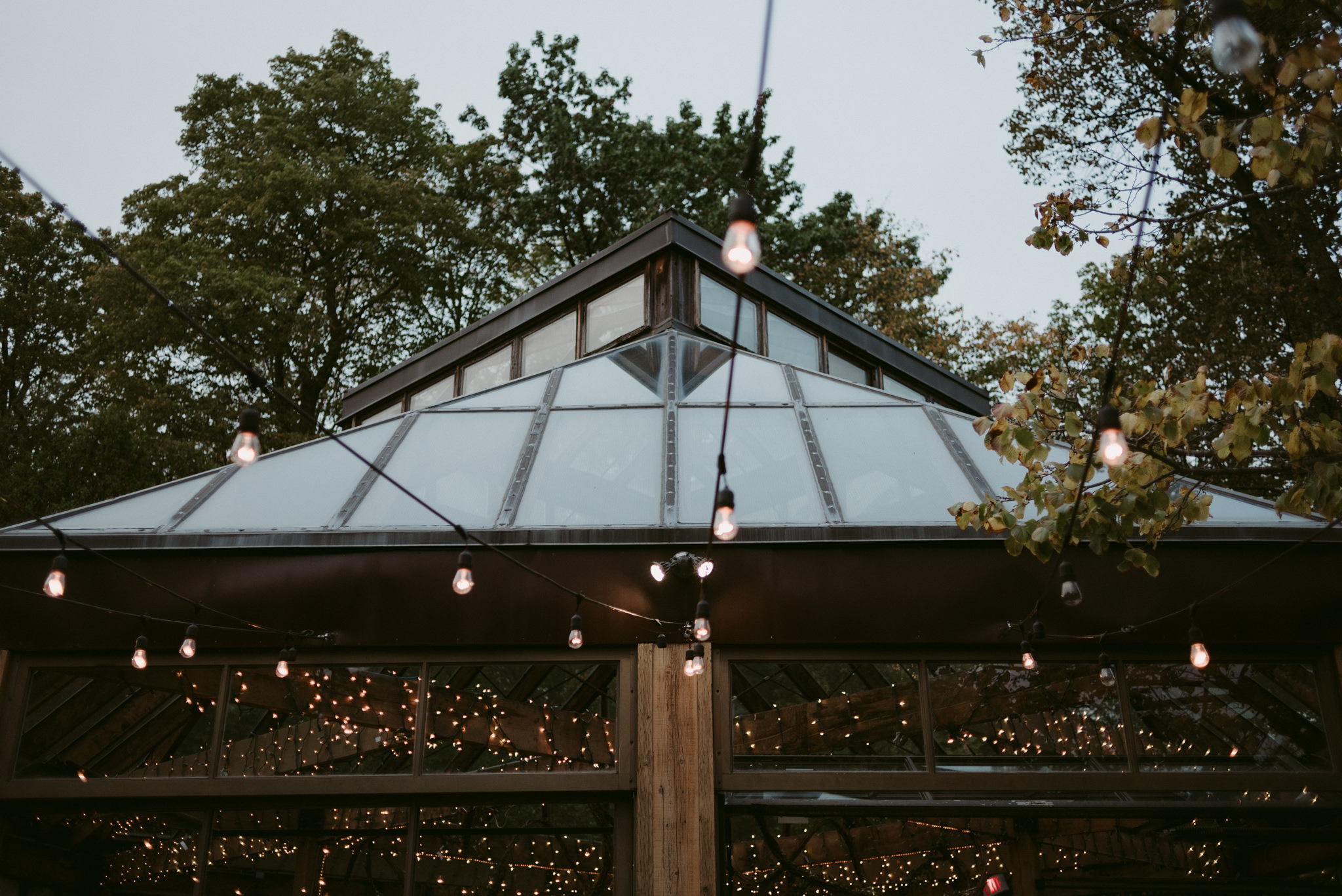 String lights and glass building