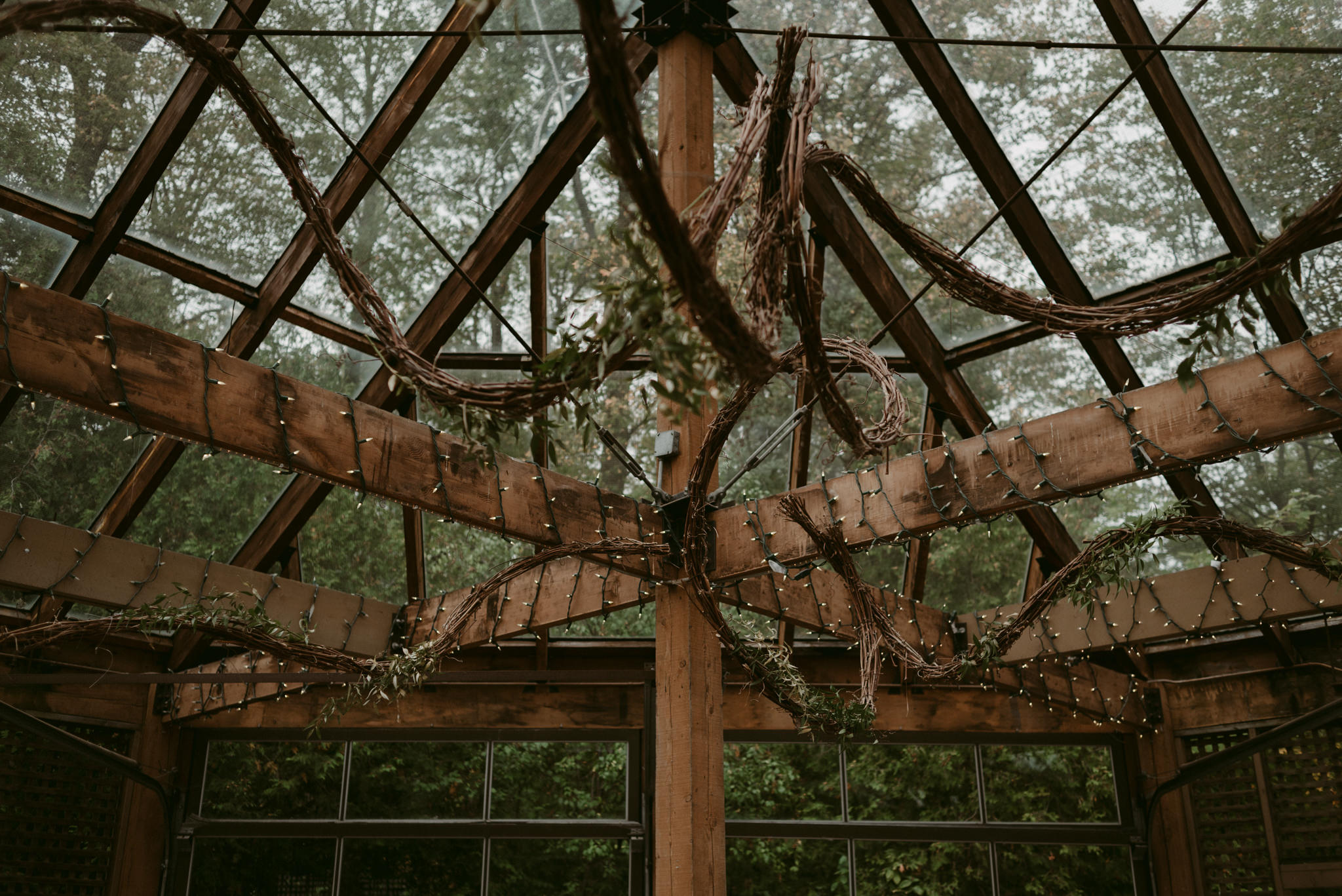 Wooden beams covered in vines and string lights for wedding reception at Kortright Centre for Conservation