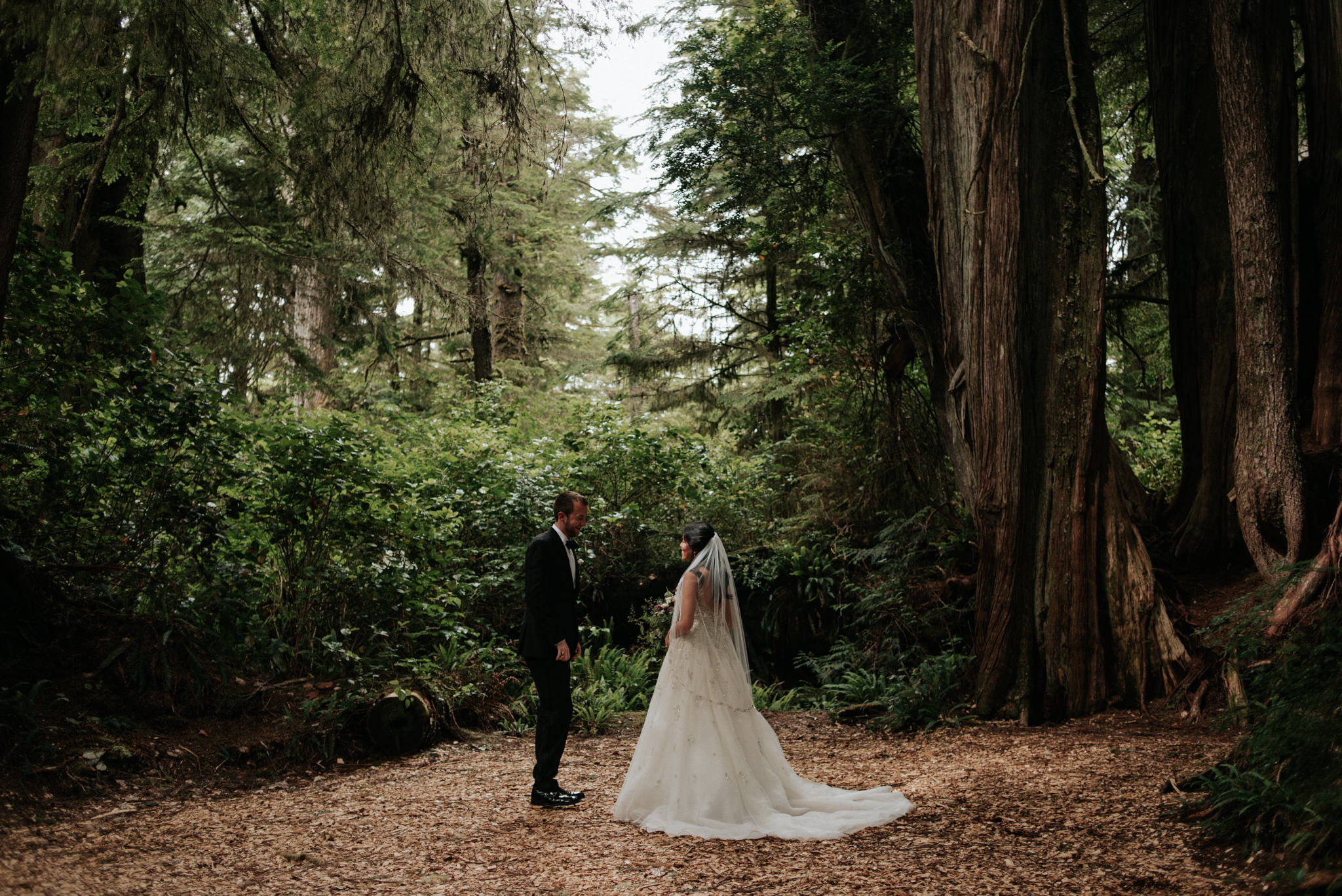 redwood grove at Wickaninnish Inn wedding