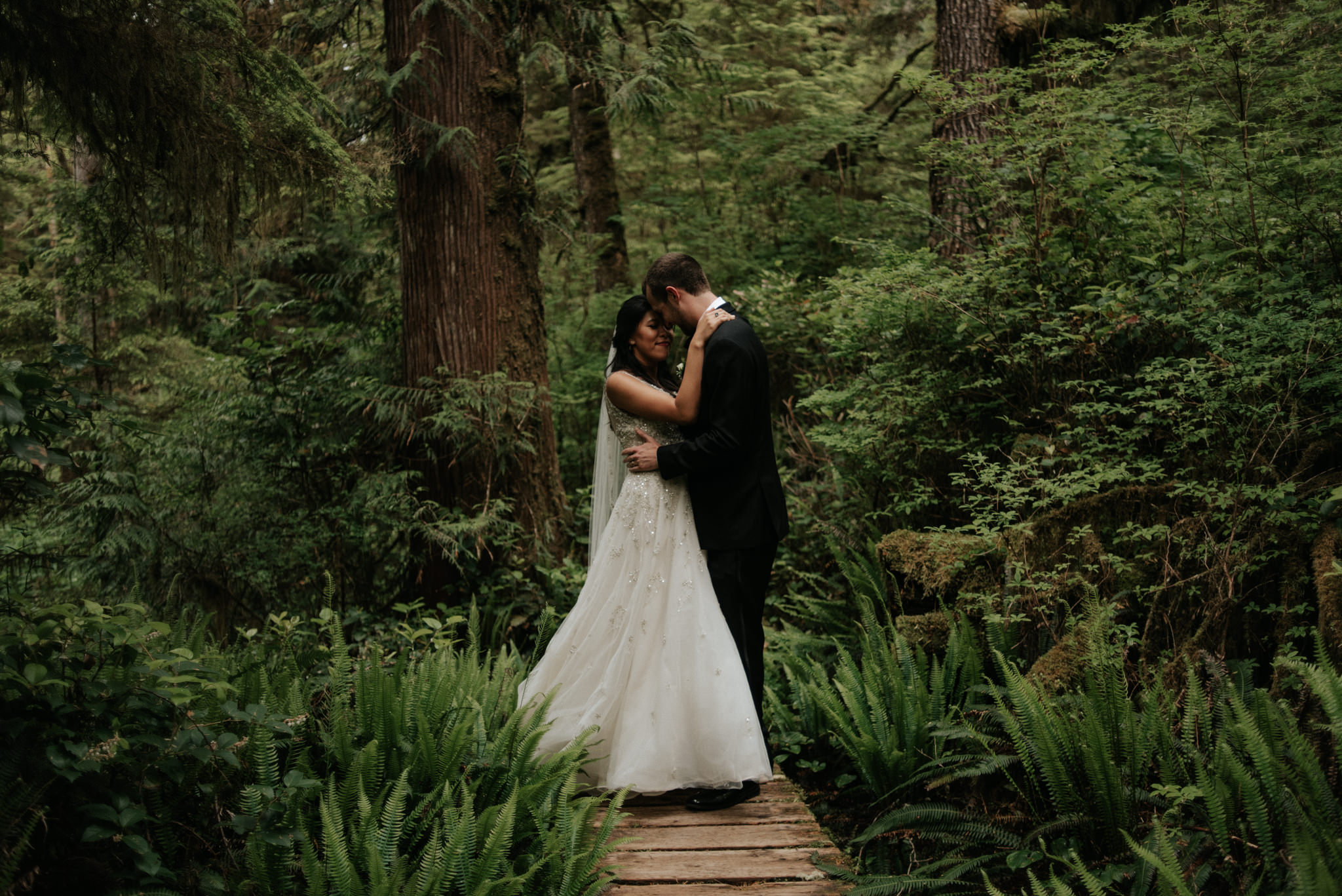 Pacific Rim National Park Wedding portraits, Tofino elopement