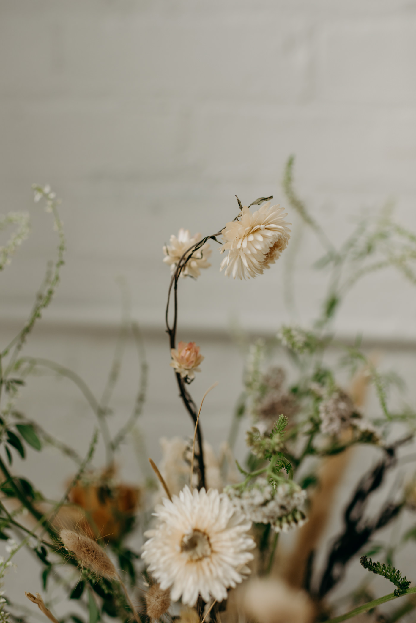 dried flowers in bouquet