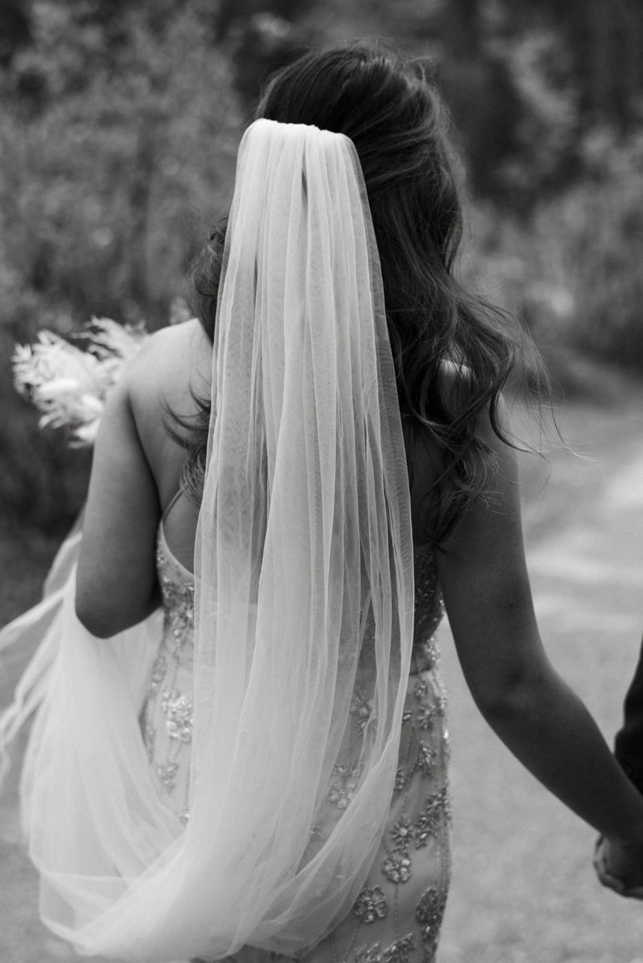 bride walking in veil and holding grooms hand, national park elopement