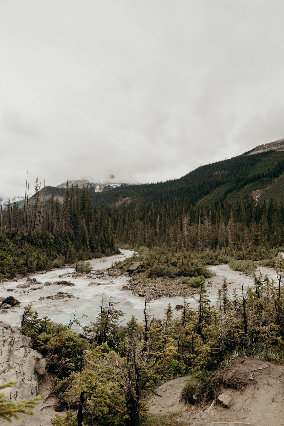 Yoho national park elopement