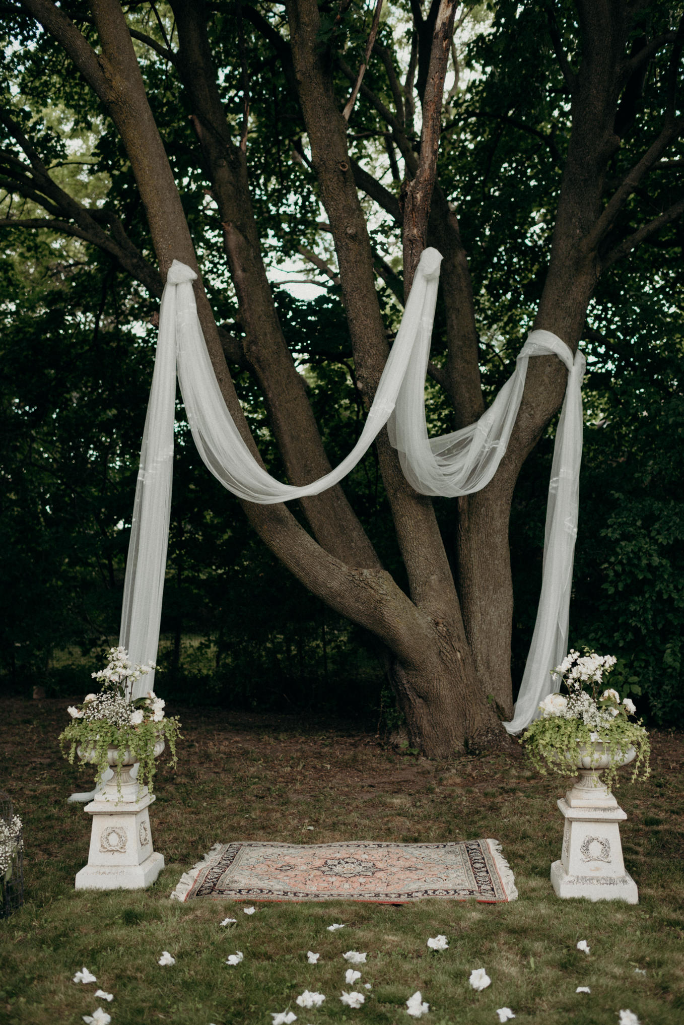 Backyard wedding ceremony setup