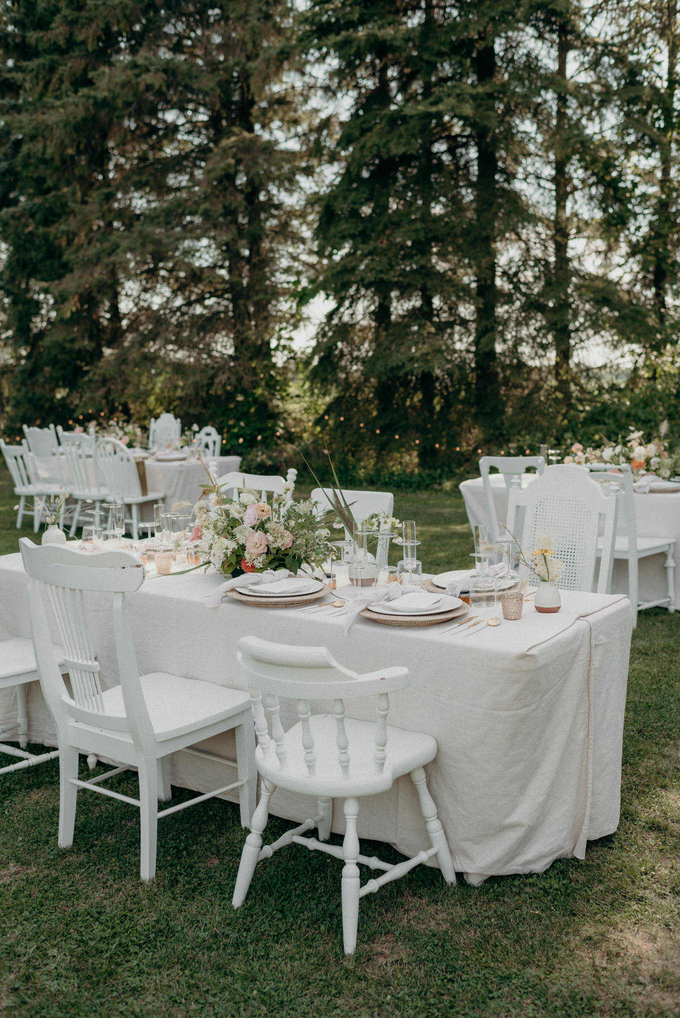 outdoor wedding reception surrounded by trees and string lights