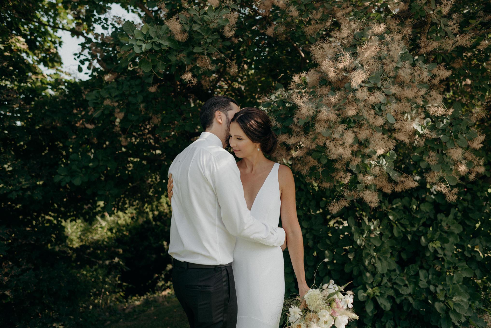 groom kissing bride under smoke bush tree