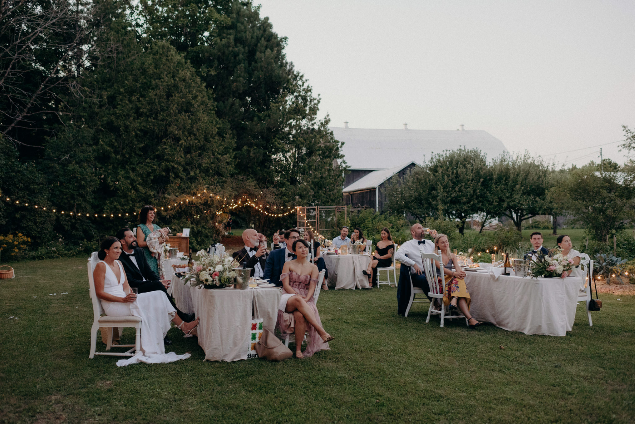 outdoor grass wedding reception on a farm surrounded by trees and string lights