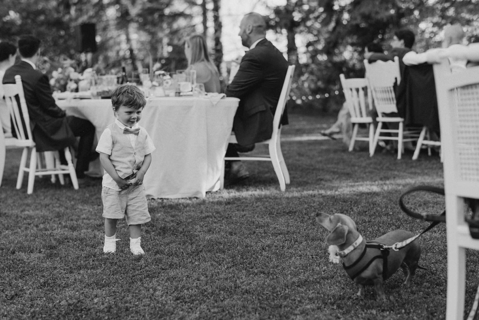 little boy playing with dog at outdoor wedding reception