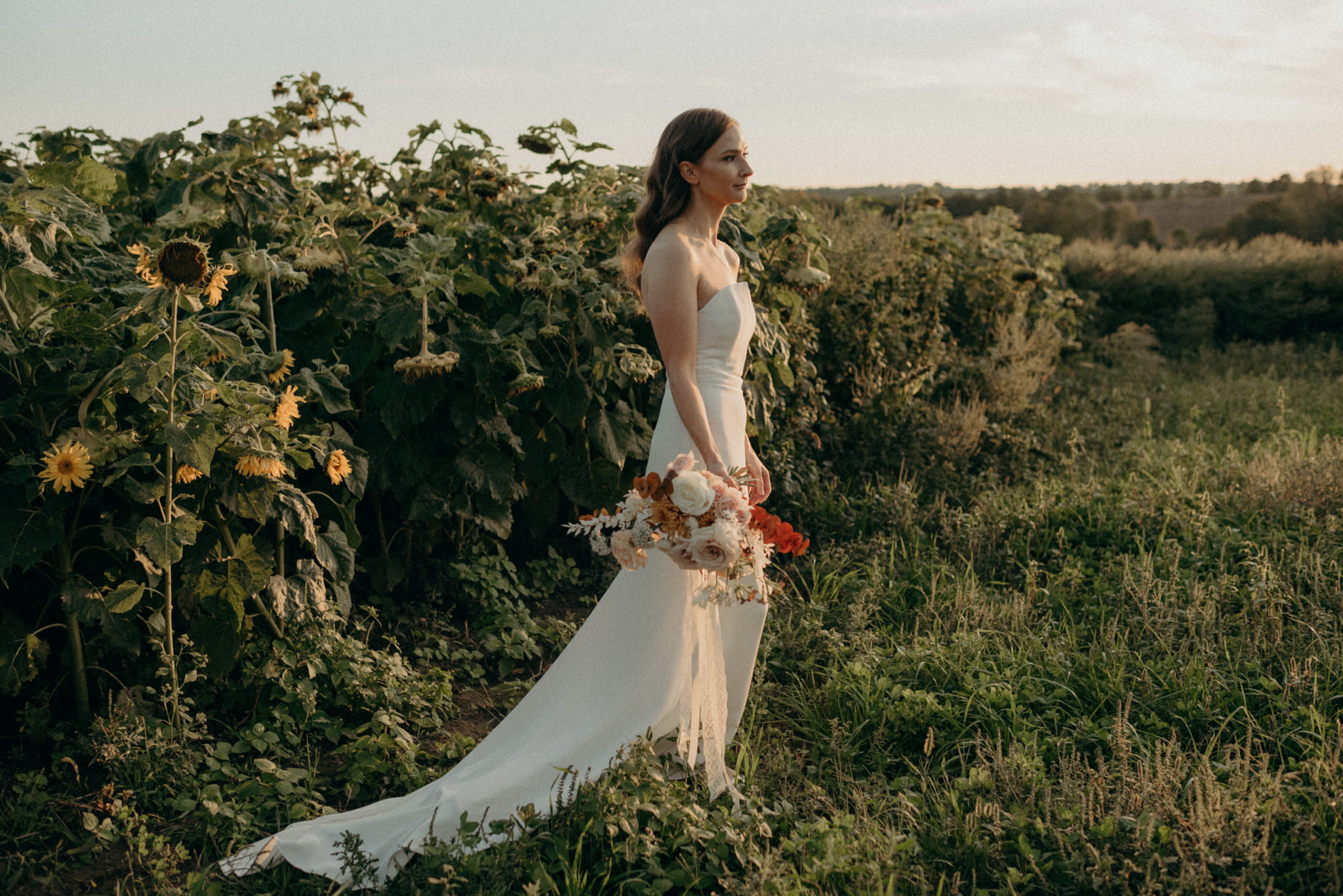 Wedding portraits in a sunflower field at sunset. Good Family Farms wedding.