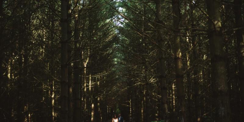 Intimate Southampton Wedding on Lake Huron by Ontario wedding photographer Daring Wanderer