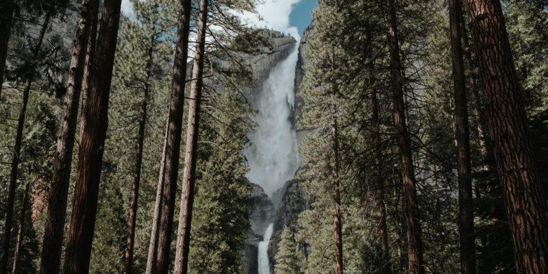 Lower Yosemite Falls in Yosemite National Park